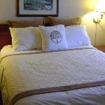 Bed at the Sacramento Hawthorn