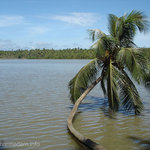 Dharmadam Beach