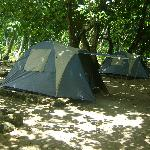Photo de Waitabu Marine Park and Campground