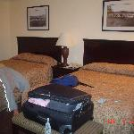 Photo de BEST WESTERN Danville Sycamore Inn