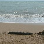 Aree Bungalow
