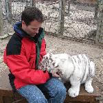Playing with the cub