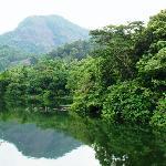 Bhoothathankettu Reservoir