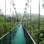 José arranged for us to go to the hanging bridges and it was great.