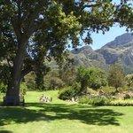 Summer's day at Kirstenbosch
