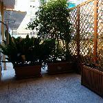 """Il terrazzino """"condiviso"""" e separato dai vicini con delle piante..."""
