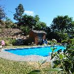 pool at catbird ridge