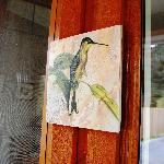 catbird at catbird ridge