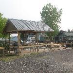 back deck & BBQ area