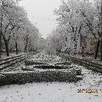 Main street of Arad
