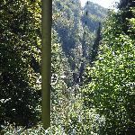 Dedinky uphill