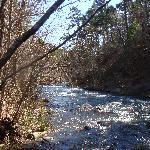 Upper Spillway Creek fishing area