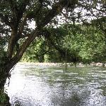 River Near Farm