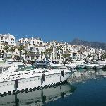 Puerto Banus harbour