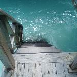 Steps from your water bungalow