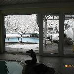Pool mit Blick ins Freie