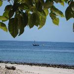 Contadora Isle Beach View