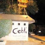 Foto de Cetli