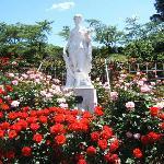 皇室等にちなむバラを集めたロイヤルコーナー