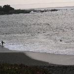 The surf at the beach