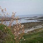 côte Nord de l'ïle