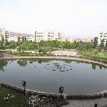 Photo de 598551