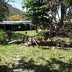 Il giardino2