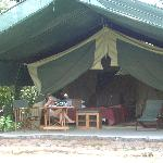 Tents in the bush!