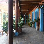 couloir vitré sur patio