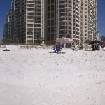 180 Degree Panorama Of Beach and Adjoining Condos