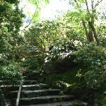 階段を上りながらの苔の感じが好き
