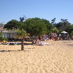 La plage privée de l'Hôtel