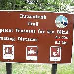 Buttonwood Trail is designed for the visually impaired
