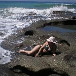 Lounging at the tide pools