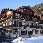 Photo de Hotel Alpina