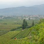 View of Valpolicella Valley from Housea