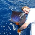 John's sailfish