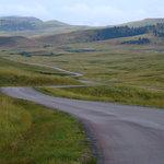 Rolling Grasslands along the Wildlife Loop
