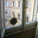 The window ventilation