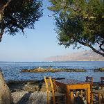 Dine under the tamarisk at Flisvos