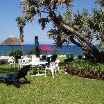Photo de Blue Marlin Hotel