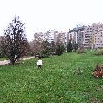 山口公園。後ろにホテル
