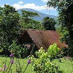The guest cabin and Albergue Socorro