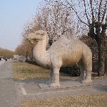 Près du tombeau des Ming