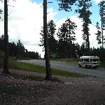 Road outside Senator's Cabin