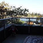 balcony of ocean view room