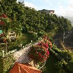 View of gardens from balcony