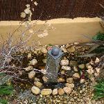 the zen cascade