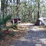 Fort McAllister State Historic Park Campground Foto