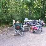 This is 1/4 of the site. Our tent was off to the right. Another tent would easily fit w/out crow